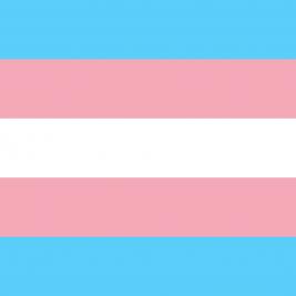 transgender-vlajka